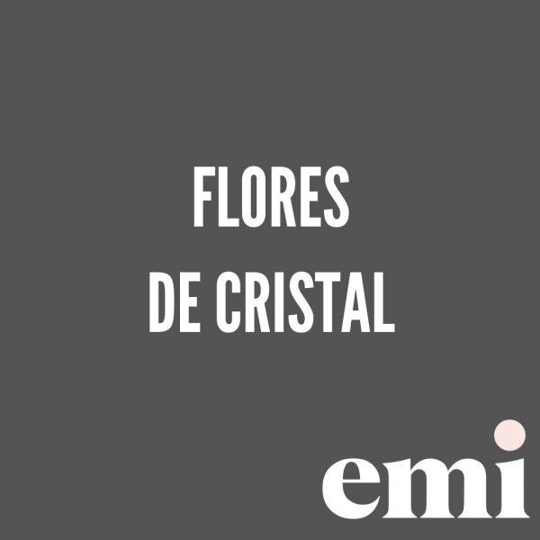 cursos express emi flores cristal